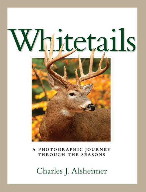 Whitetails EB9781440217449