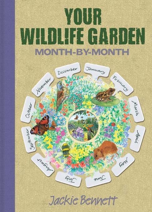 Wildlife Garden month by month