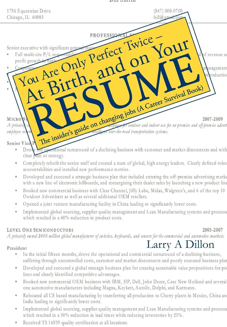 You're Only Perfect Twice: At Birth and on Your Resume EB9781612044323