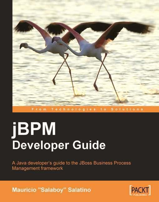 jBPM Developer Guide EB9781847195692