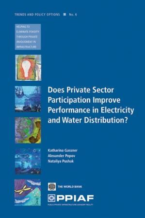 Does Private Sector Participation Improve Performance in Electricity and Water Distribution? EB9785551928768