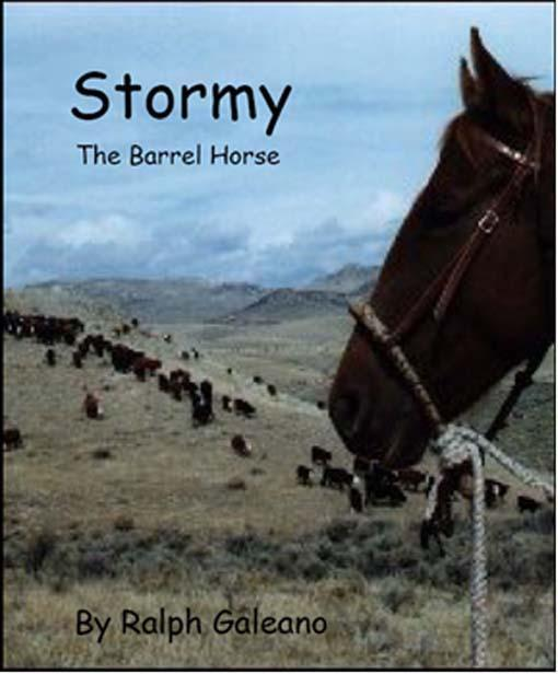 Stormy The Barrel Horse EB9785551757825