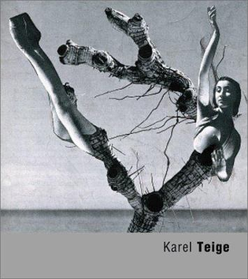 Karel Teige 9788072151523