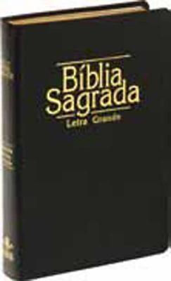 Portuguese Large Print Bible-FL
