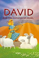 David and the Kingdom of Israel 13338391
