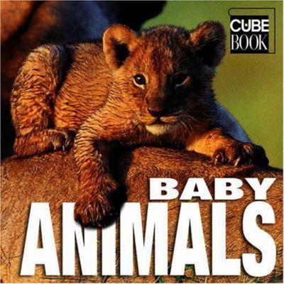 Baby Animals 9788854401990