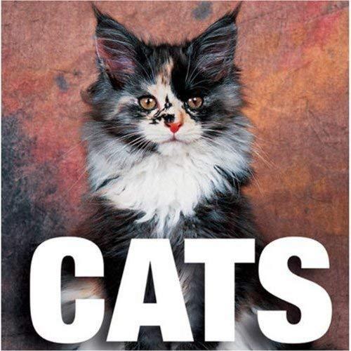 Cats 9788854400764