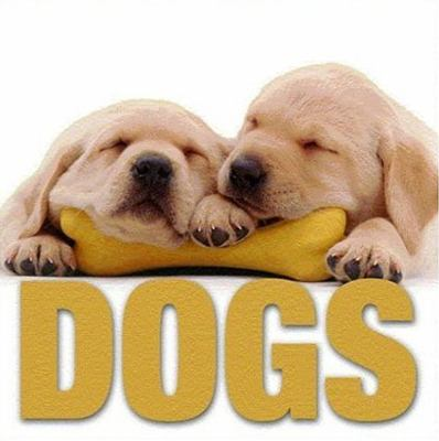 Dogs 9788854401105