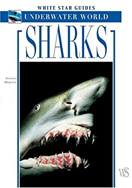 Sharks 9788854400542