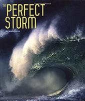 The Perfect Storm 10986067
