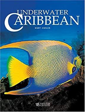 Underwater Caribbean 9788854400139
