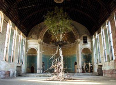 Shinji Turner-Yamamoto: Global Tree Project 9788862082280