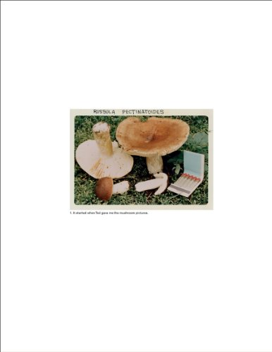Jason Fulford: The Mushroom Collector 9789081058421