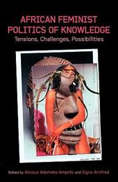 African Feminist Politics of Knowledge. Tensions, Challenges, Possibilities 8486412