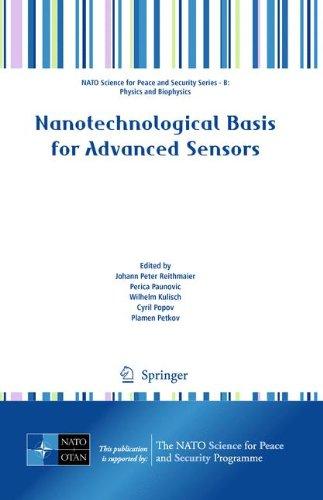 Nanotechnological Basis for Advanced Sensors - Reithmaier, Johann Peter / Paunovic, Perica / Kulisch, Wilhelm