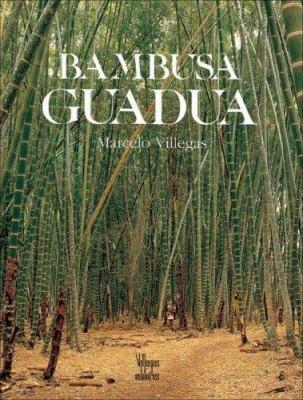 Bambusa Guadua 9789589138212