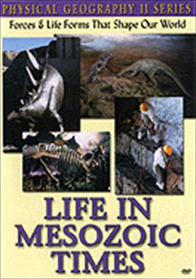 Life in Mesozoic Times