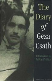 Diary of Geza Csath 8570129