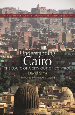 Understanding Cairo: The Logic of a City Out of Control 9789774164040